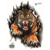 Samolepiace dekor Avis Tiger metal, UV filter 475 x 635 mm